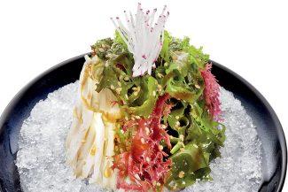 <b>Kaisou Salad</b>
